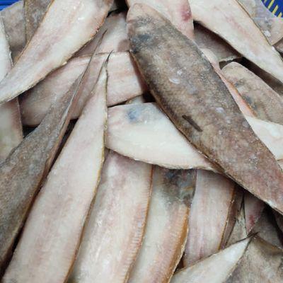 Sole Fish (Cynoglossus Macrolepidotus)